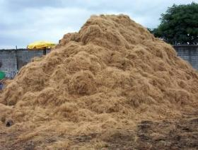 A pile of coir extracted from used coconuts