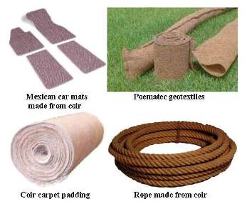 some examples of products made of coir from recycled coconuts