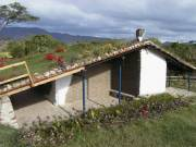 side view of Casa Ecologica with living roof