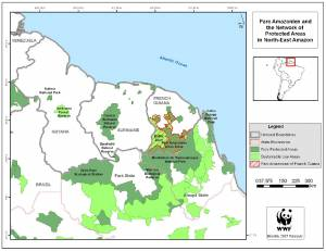 WWF map of the newly linked tropical forest preserves in the Northern Amazon